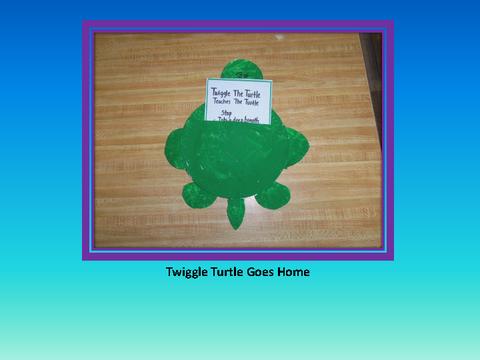 Twiggle Turtle Goes Home
