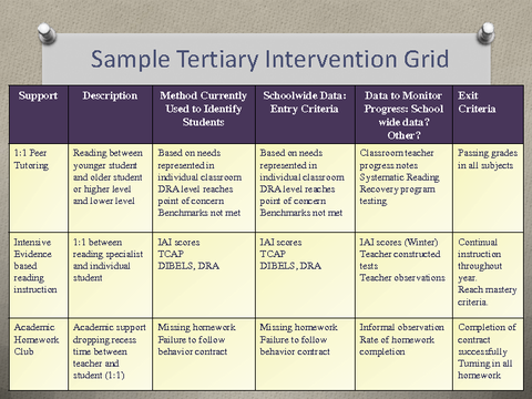 Sample Tertiary Intervention Grid