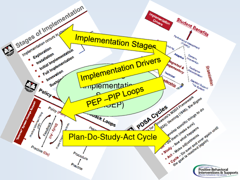 Effective Implementation Science (SISEP)