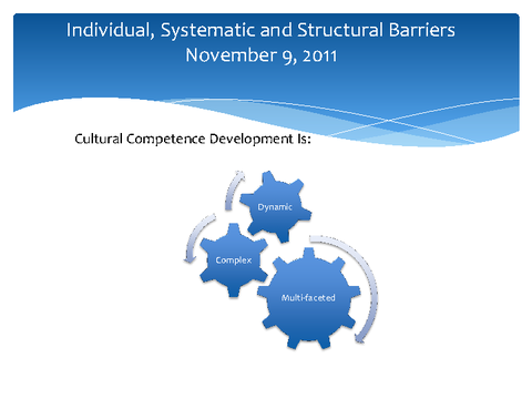 Individual, Systematic and Structural Barriers November 9, 2011