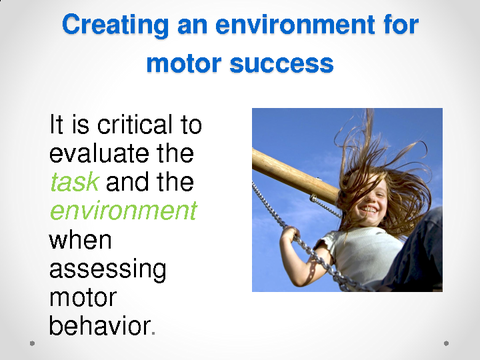 Creating an environment for motor success