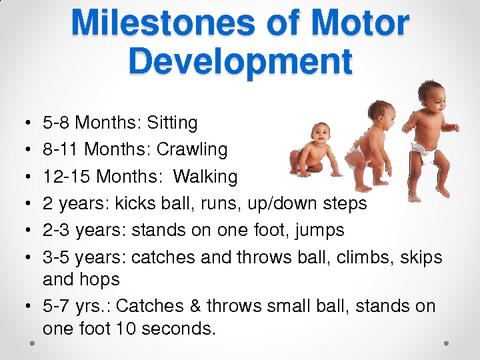 Milestones of Motor Development