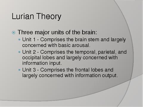 input output brain